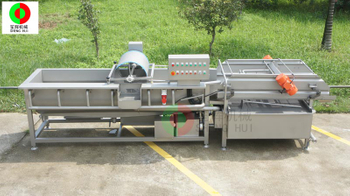 The importance of vegetable washing machine for the processing of clean vegetables
